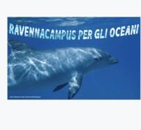 Università di Bologna, Campus di Ravenna