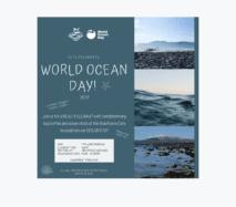 Sea Synergy Marine Awareness & Activity Centre