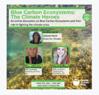 Divers for Climate