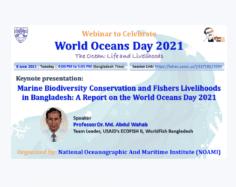 National Oceanographic And Maritime Institute (NOAMI)